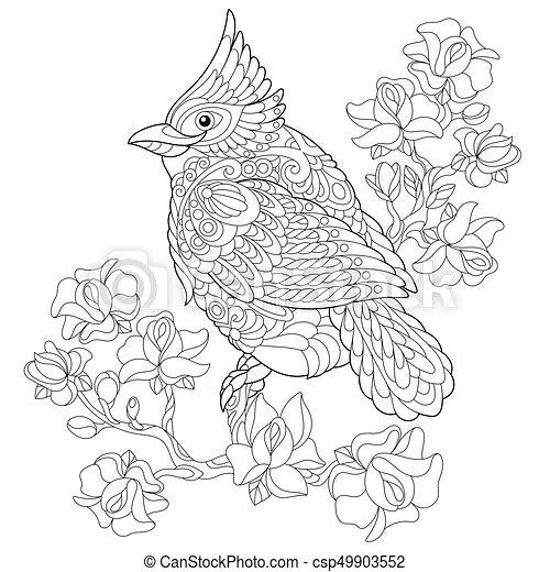 Zentangle stylized cardinal bird