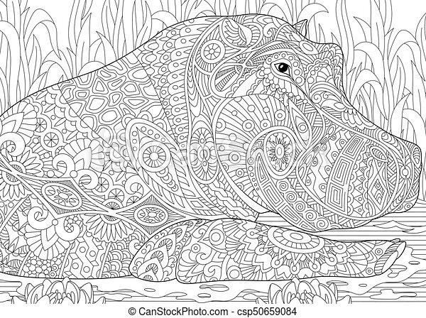 Zentangle Stylized Hippopotamus Coloring Page Of