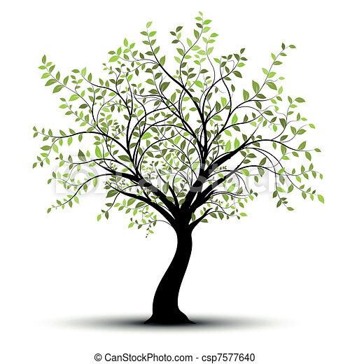 zieleń biała, wektor, drzewo, tło - csp7577640