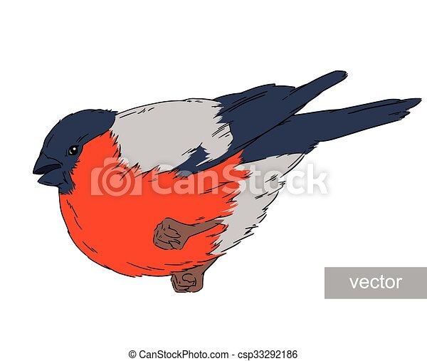 Zima Ptak Ilustracja Gil Dziewiczość Zima Natura Ilustracja