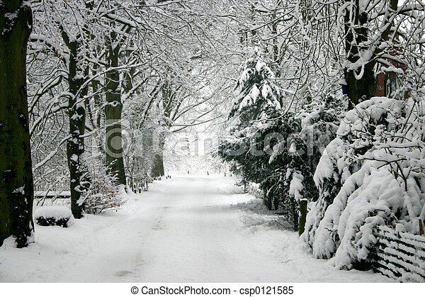 zima - csp0121585