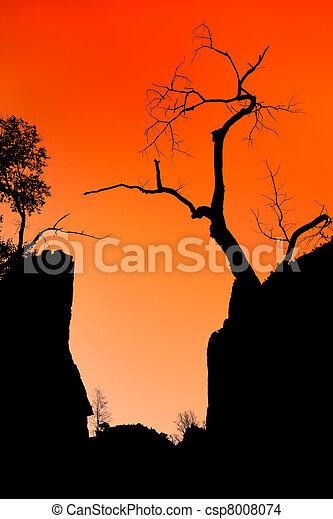 Zion canyon sunset - csp8008074
