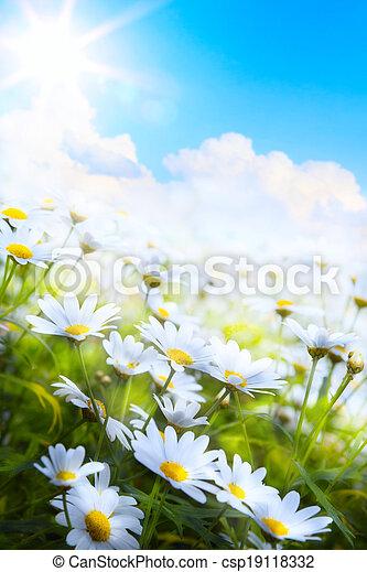 zomer, bloem, kunst, lente, abstract, achtergrond, gras - csp19118332
