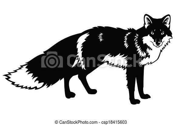 zorro, blanco, negro - csp18415603