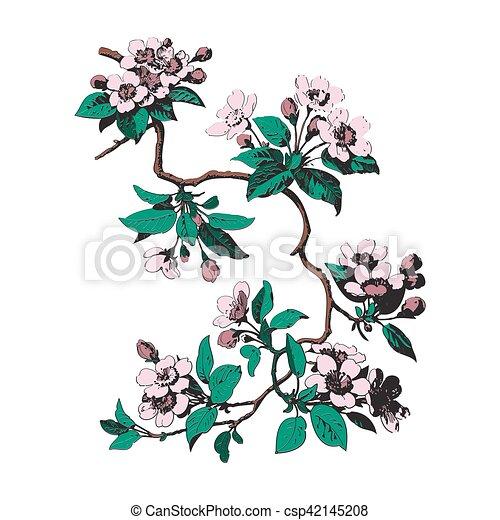 Zweige, bunte, blätter, bac, weisse blumen, botanik.... Vektor ...