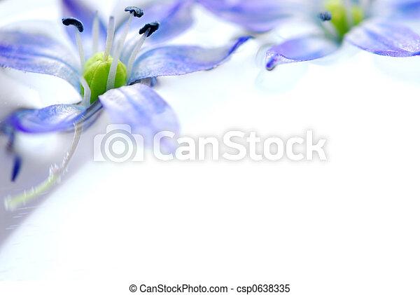 zwevend, bloemen - csp0638335