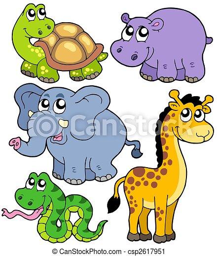 zwierzęta, 4, zbiór, afrykanin - csp2617951